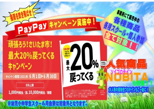 Paypay_20210608191101